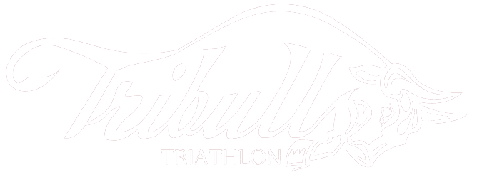 tu-club-de-triatlon-en-madrid-tribulls-triathlon